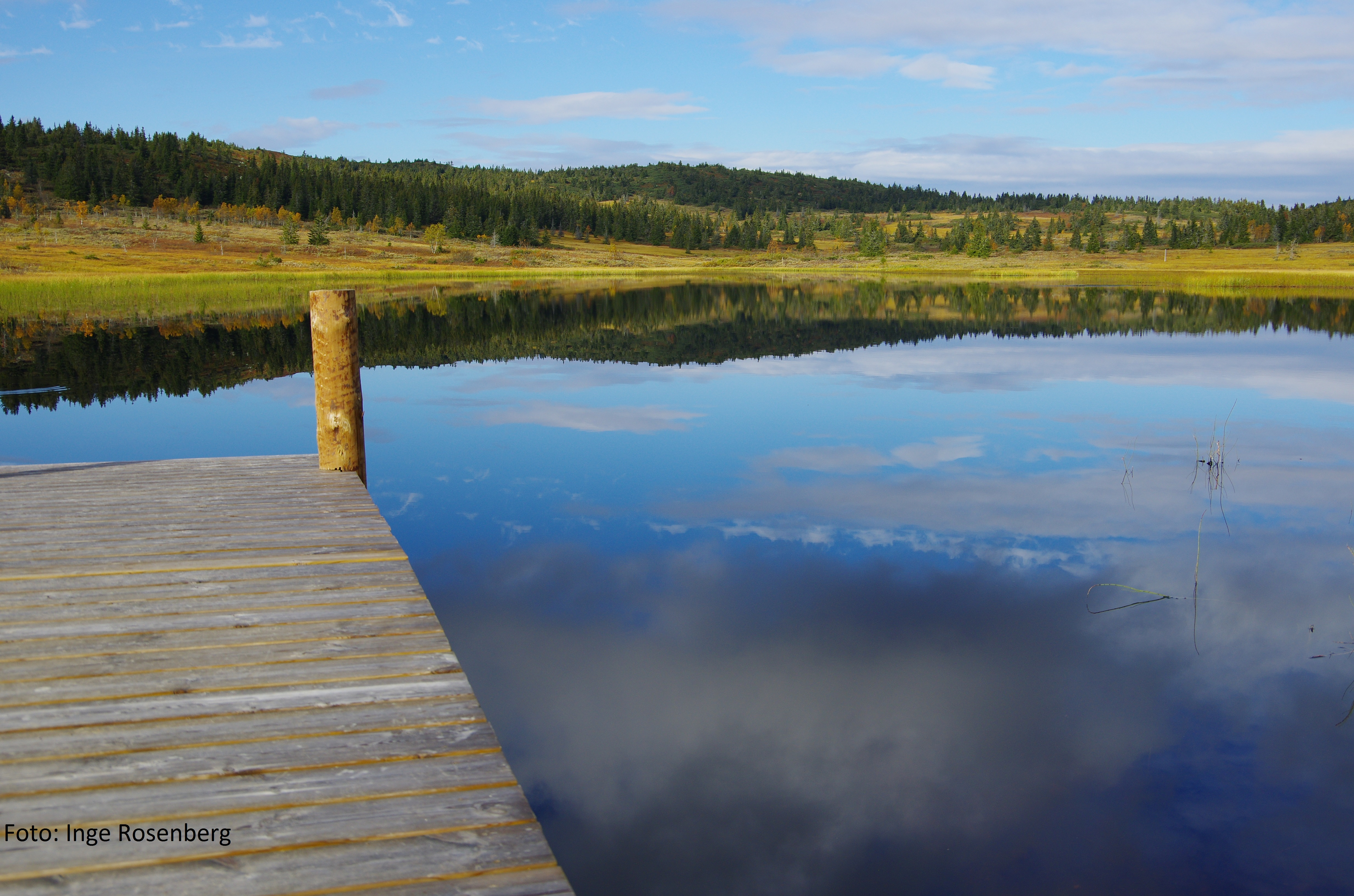 Høst ved Aksjøen