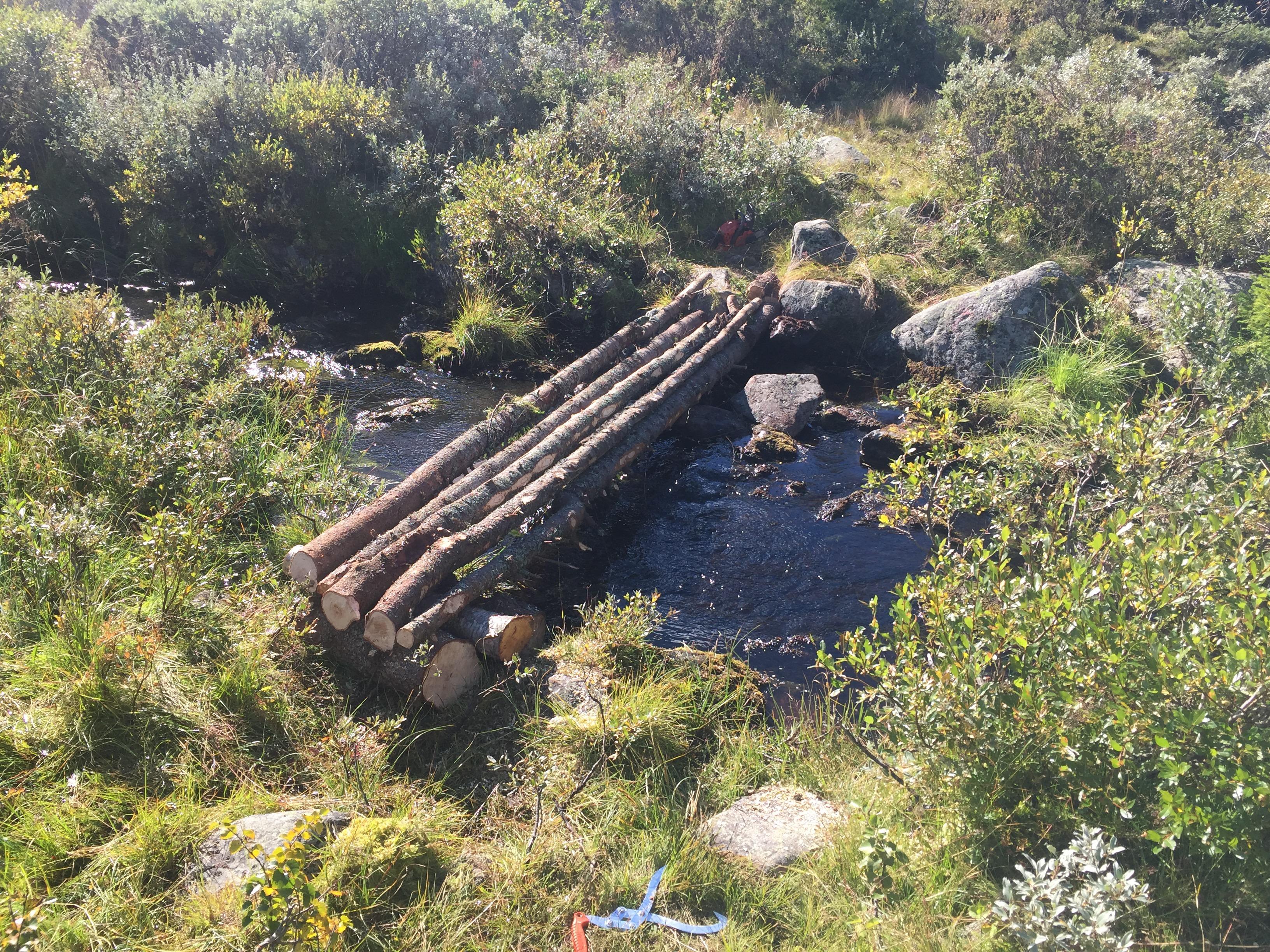 Enkel bro over Aksjøbekken laget av trestokker